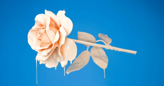 A cor rosa